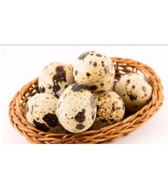 Trứng cút (vỉ 30)